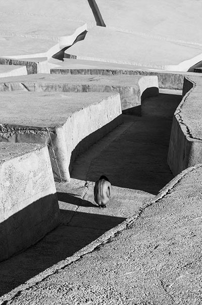 Labirynt #01 fot. Szymon Brodziak