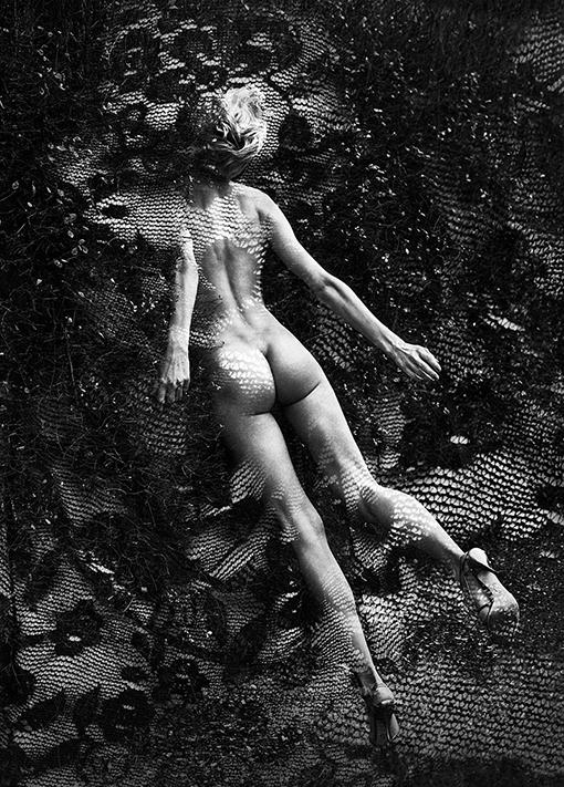 B_365 #10 fot. Szymon Brodziak